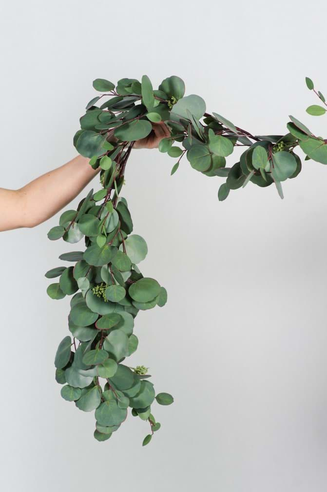 Picture of Silver Dollar Eucalyptus Garland